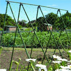 allotment grantham