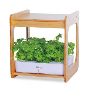 Kitchen hydroponic kit