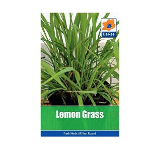 lemongrass seeds