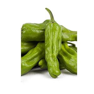 shishito pepper