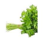 french parsley