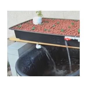 DIY Aquaponics Plan