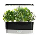 Kitchen hydroponic kit