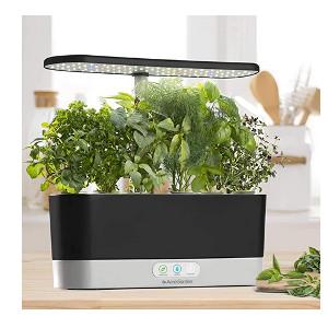 kitchen top hydroponics kit
