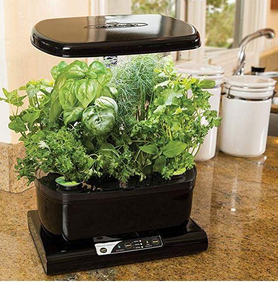table top hydroponics unit