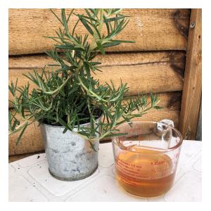 rosemary honey main