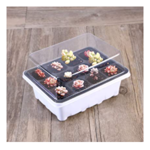 seed trays with lid